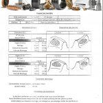 pv de controle Couples de pignon spiro conique acier 16NC6 18 18 dts M8